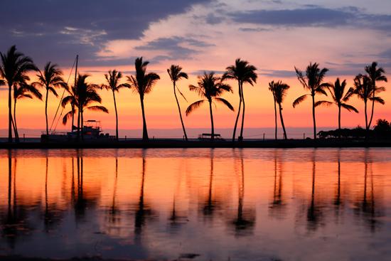 ハワイの海辺の写真