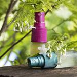 アロマで防虫対策の記事のトップ画像
