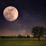 月と出産の関係の記事のトップ画像キャプチャ