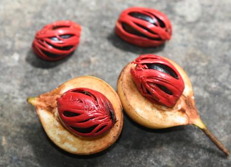 ナツメグの原料となる種の部分の画像