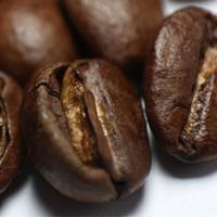 コーヒー染めの記事のキャプチャ