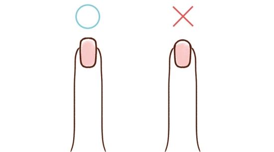 爪の形07243