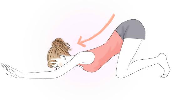 背中と腰を伸ばすストレッチ 5067-1