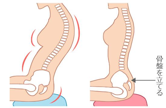 骨盤をたてることを意識する座り方
