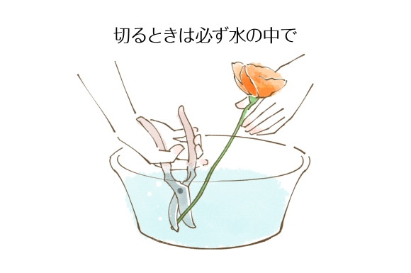 水きりの方法1028-2