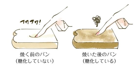 パンの糖化現象1011-2