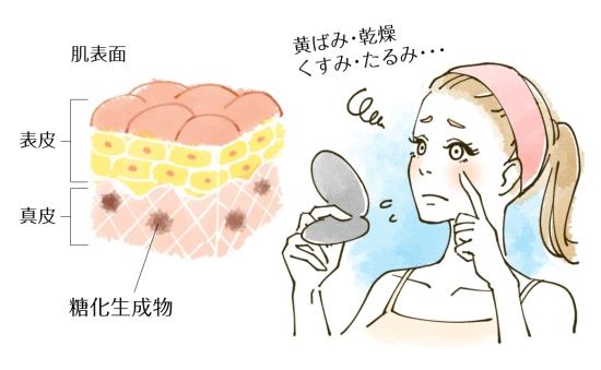 肌の糖化1011-3