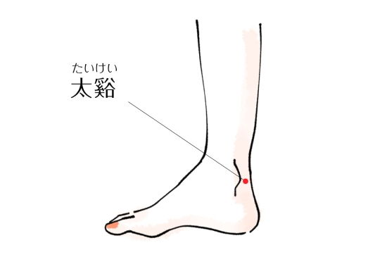 太渓-1128-4