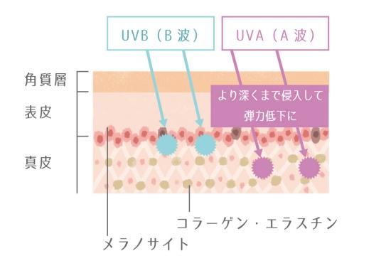 紫外線-1110-2