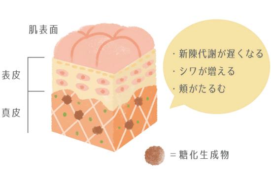甘いものを食べると細胞が老化して頬がたるむ-1110-3