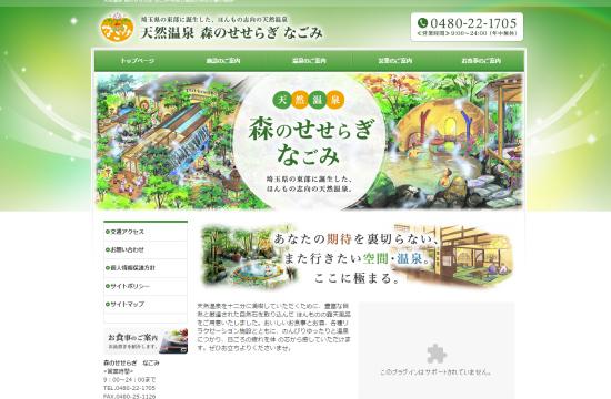 埼玉県 天然温泉 森のせせらぎ なごみ-120613