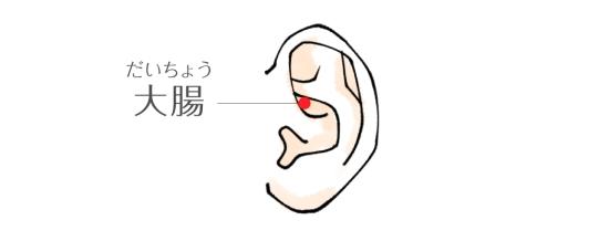 大腸0111-6