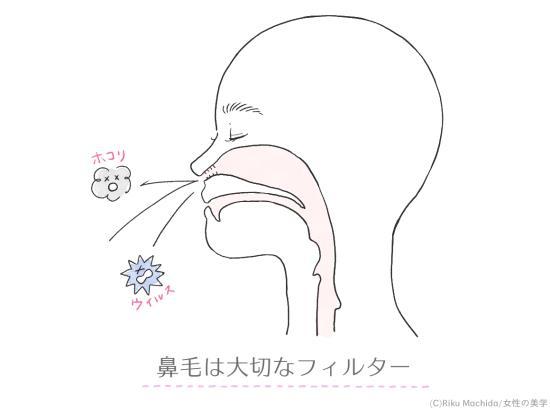 鼻毛は大切なフィルター