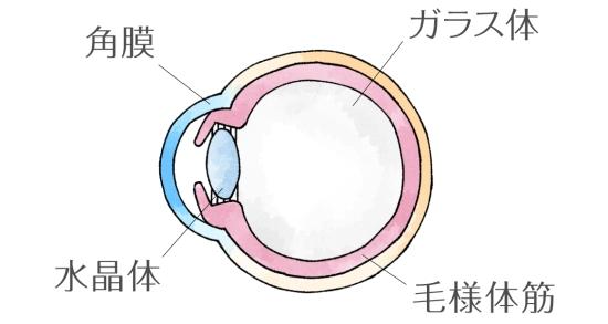 若年性老眼0417-1
