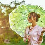 日傘の選び方の記事のトップ画像