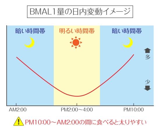 BML10123-1