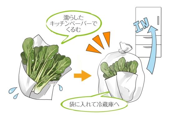 小松菜の保存の仕方0622-4