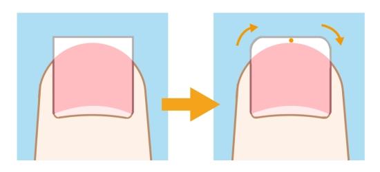 爪の正しい切り方 0711-1
