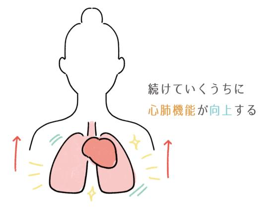 縄跳びによって心肺機能が向上する