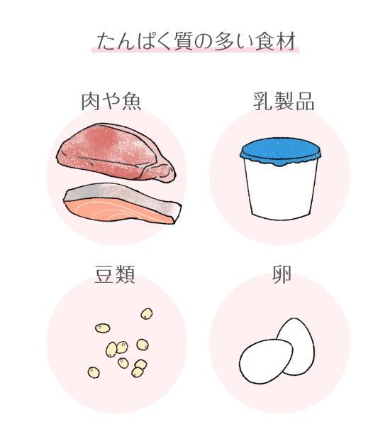 赤ちゃんのための栄養タンパク質