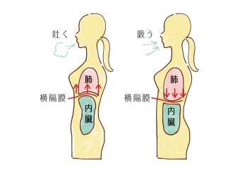 腹式呼吸で横隔膜を鍛える09115