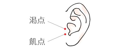 耳つぼ6844