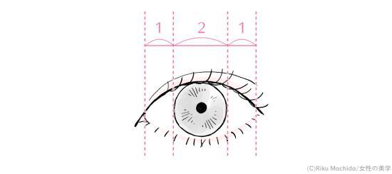 美人顔の目の比率