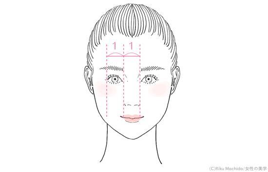 美人顔の眉間の比率