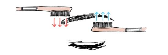 上下に毛の流れを整える32159
