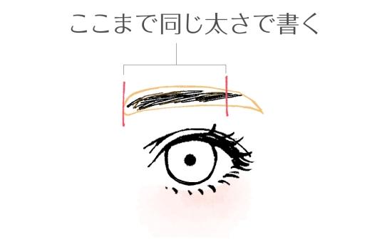 眉頭から眉尻の少し手前まで同じ太さで書く020919