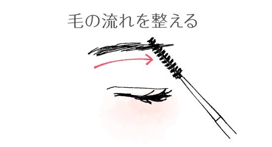 毛の流れを整える02094