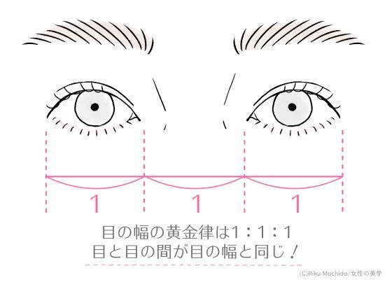 目の幅の黄金律