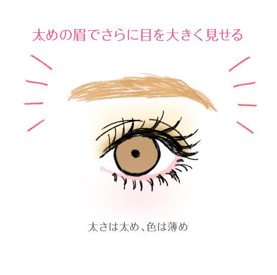 太めの眉でさらに目を大きく見せる