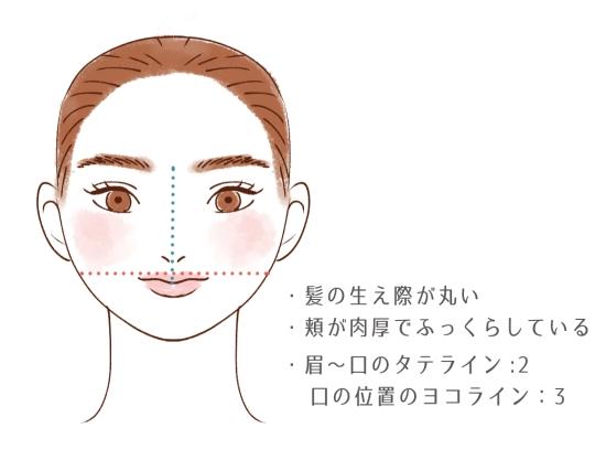丸顔の原因