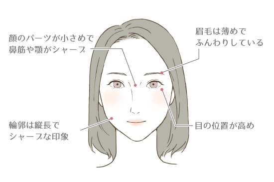 男顔×薄顔さんの特徴