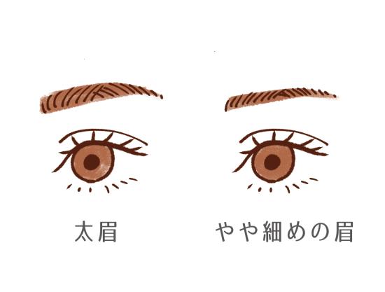やや細めの眉毛