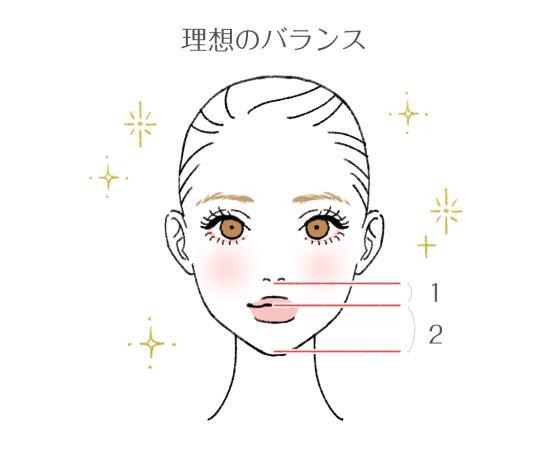 顔の理想のバランス