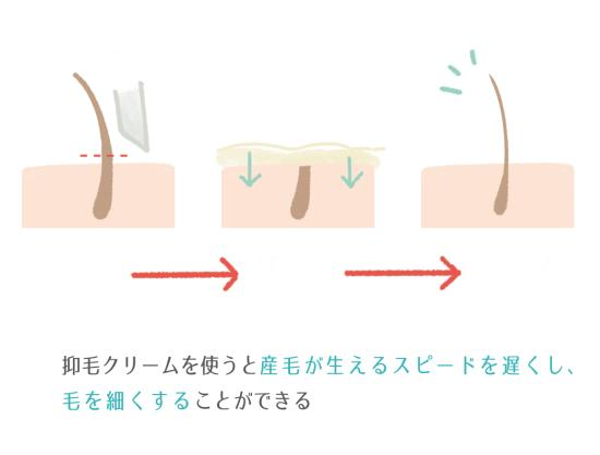 抑毛クリーム、ローションとカミソリの併用がオススメ