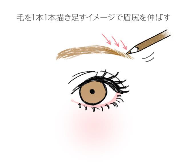 眉は目の横幅よりも長くする