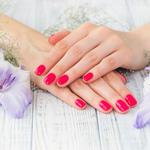 爪の形の記事のトップ画像
